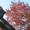 From beneath the 2nd torii.<br /> At Nagaoka Tenmangu Shrine.