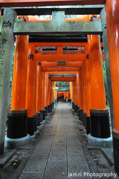 The Bright Colours of the Torii.<br /> At Fushimi Inari-taisha.