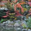 At the little garden.<br /> In Nagaoka Tenmangu Shrine Park.