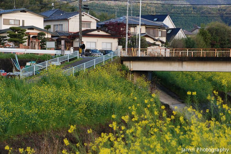 A Quiet Morning in Nagaokakyo.