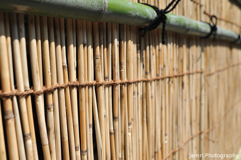 Bamboo Wall Detail.<br /> Note: Circular Polarising Filter Used.