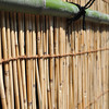 Bamboo Wall Detail.<br /> Note: Circular Polarising Filter Used.