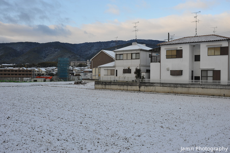 White Field and Light Coloured Houses.