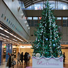 Walking by the Big Tree.<br /> The special peal Christmas tree to celebrate 30 years of the Plaza Port shopping arcade.