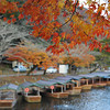 Maple Leaves in front of some boats.