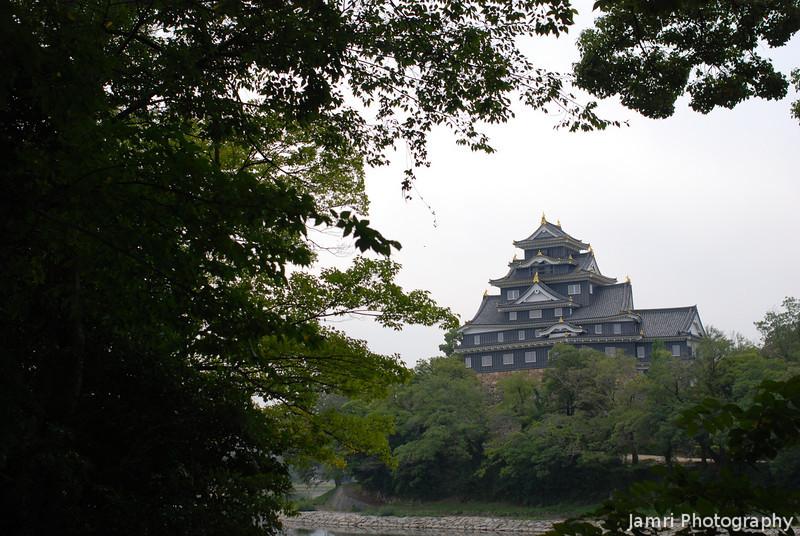 Okayama Castle though the Trees.