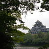 Okayama Castle though the Trees.