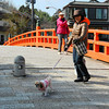 Posing for my shot.<br /> I was just trying to get a shot of the orange bridge and this smiling lady and her dog walk right into it!