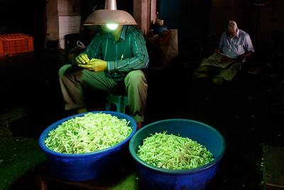 Koyambedu Flower Market, Chennai, Tamilnadu, India 2016