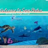 San Pedro | BELIZE
