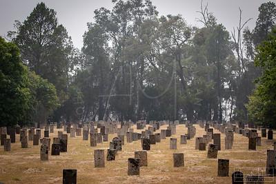 Cemetery-131