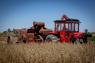 Harvest-2