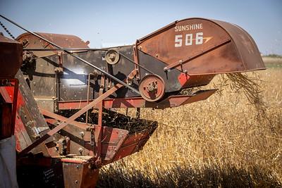 Harvest-8