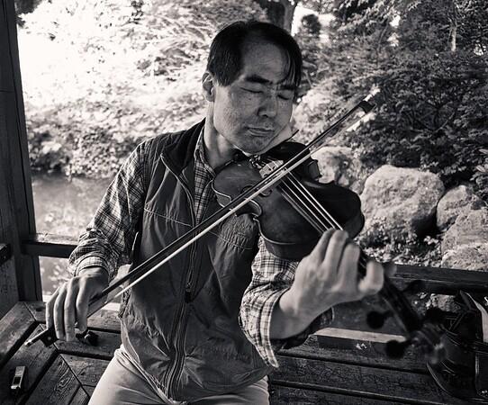 Violinist.  Munich