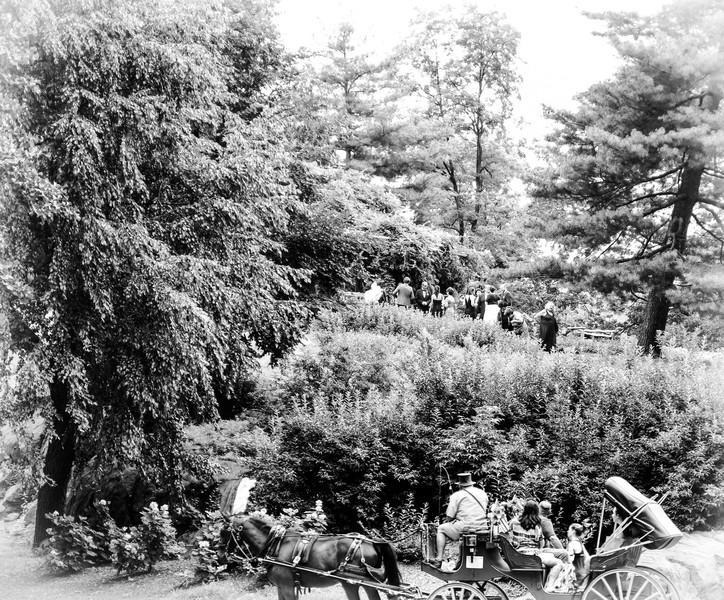 Park Scenes