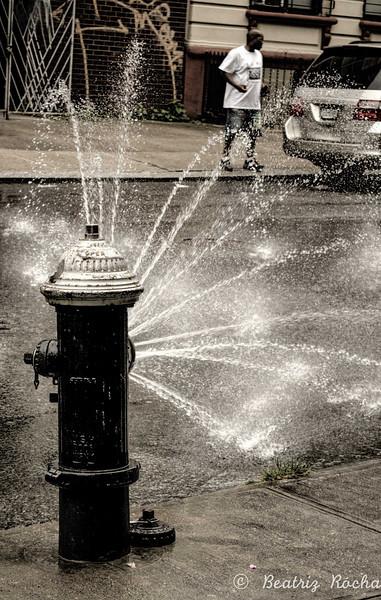 Water Spoil