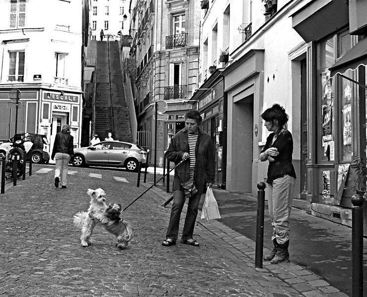 And They Call It Puppy Love, Montmartre, Paris