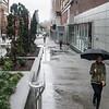 SOMA Rain