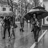 Market Street Umbrellas