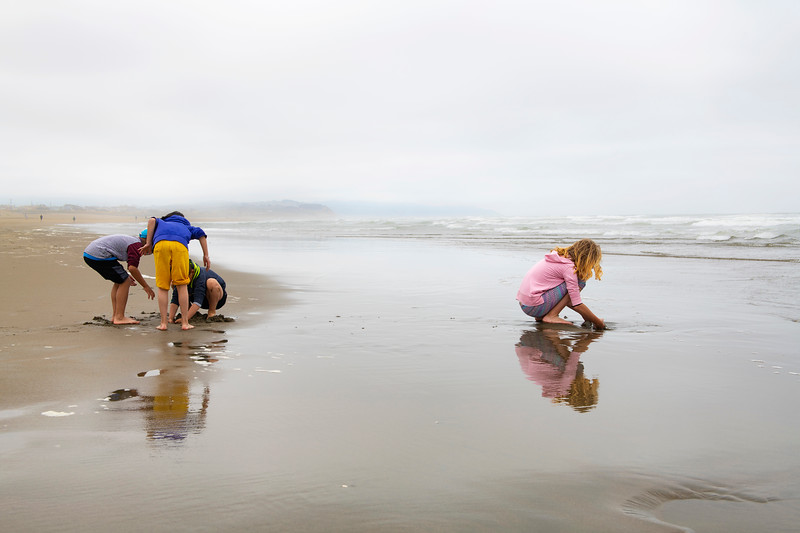 Separate Moments of Discovery on Ocean Beach