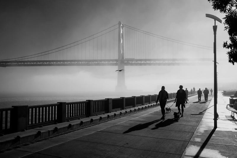 Promenade along the foggy Embarcadero