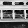 Streetcar Riders