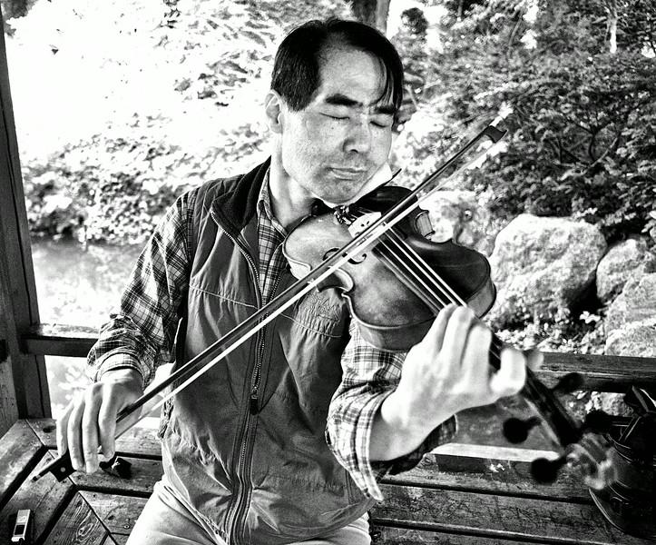 Violinist.  Japanese  Garden. Westpark.  Munich.