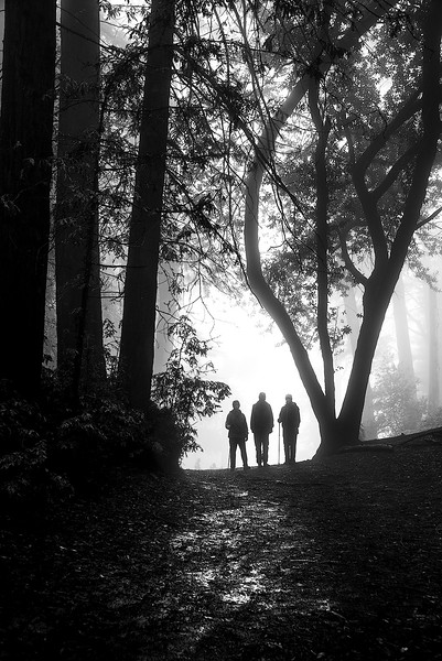 """""""Hikers in the fog"""""""