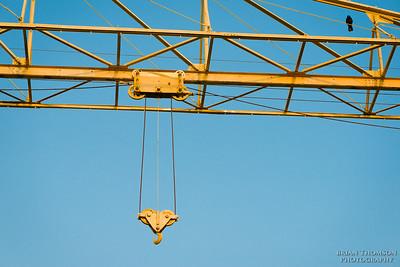 Crane - Yellow on Blue