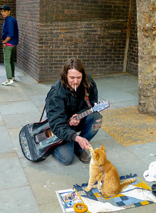 James Bowen with famous street cat named Bob