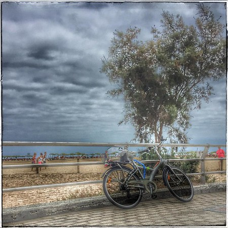 ♦️The Lonely Bicycle ♦️#bicycle #promenade #naturereserve #maspalomas #sand