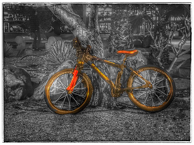 The lonely bicycle