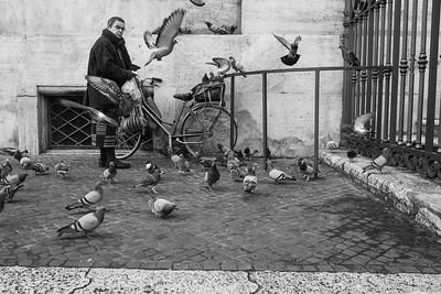 signora che da da mangiare ai piccioni di Piazza Navona