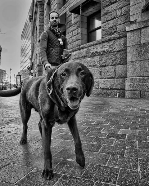 Teddy -Boston