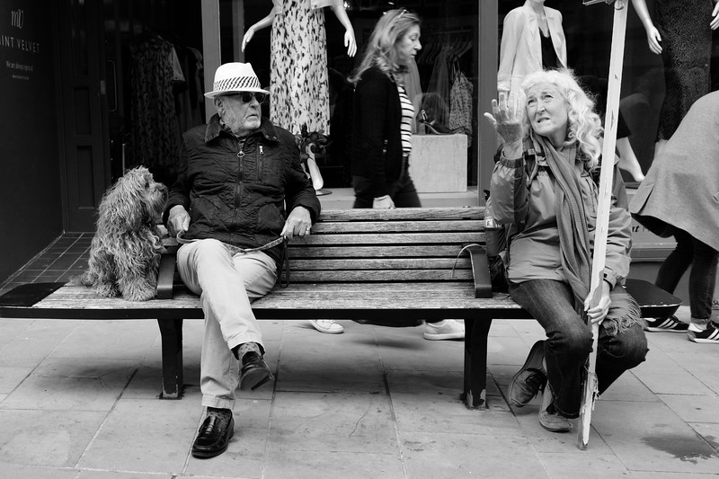 Man, Woman And Dog On Bench