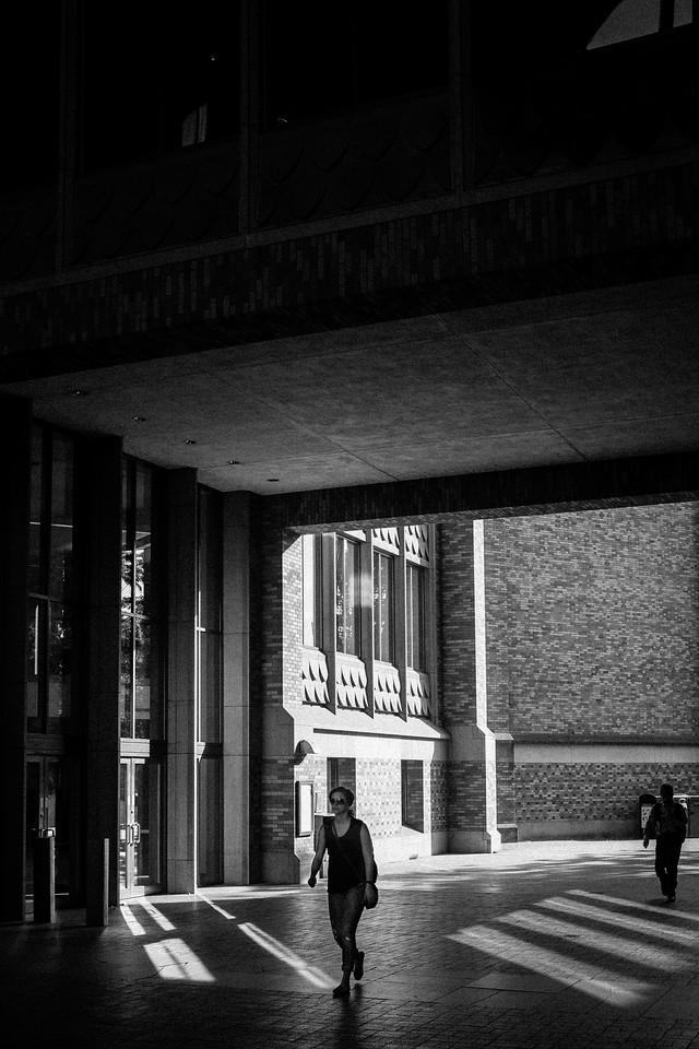 Between UW's Suzzallo and Allen Libraries | Seattle, WA | April 2016