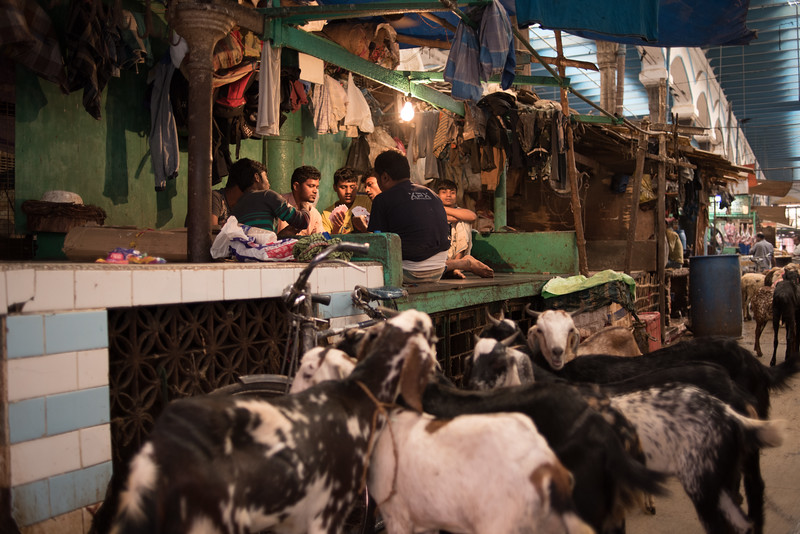 A card game in the meat market in Kolkata, India. February 10, 2018. Photo by Lorelei Trammell