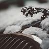 Jaguar Automobile, NYC