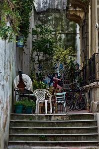 Buenos Aires Backyard b