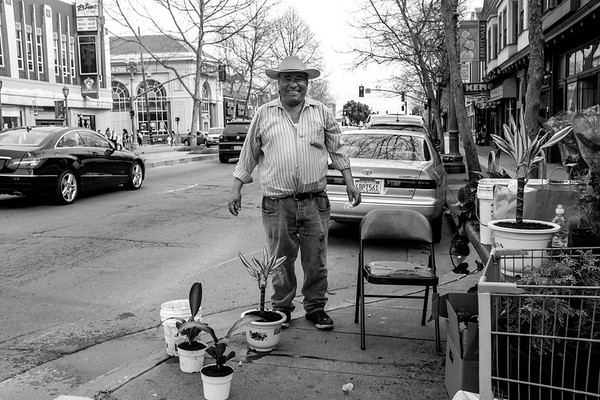 Plant Seller, Fruitvale District, Oakland