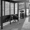 Sleeping at a bus stop