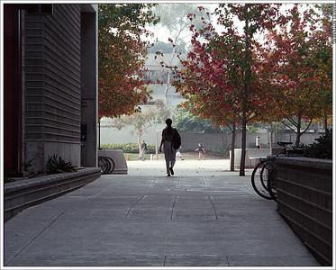 Corridor-15 1