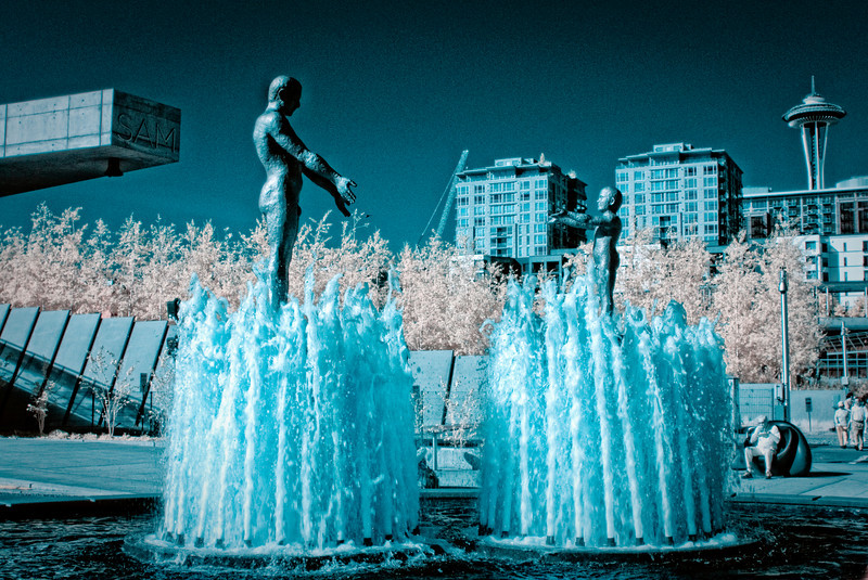 Olympic Sculpture Park, Seattle, WA<br /> Infrared converted D200 enhanced color