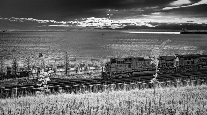 Waterfront Train, Seattle, WA<br /> Infrared converted D200 enhanced color