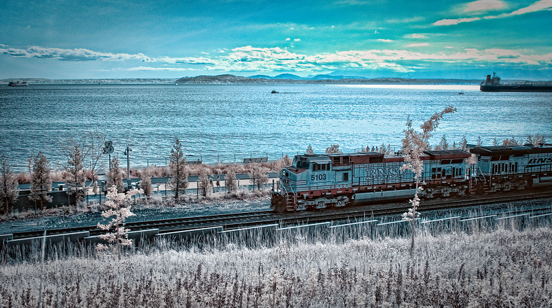 Waterfront Train<br /> Infrared converted D200 enhanced color