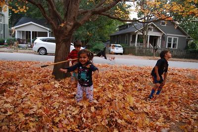 2016 Fall Fun