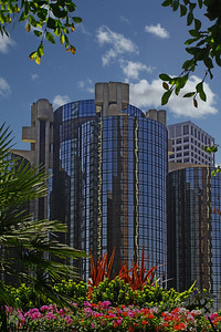 Glass Towers in LA ~ Beautiful glass buildings in downtown LA.