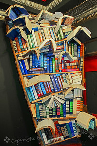 Crazy Bookcase