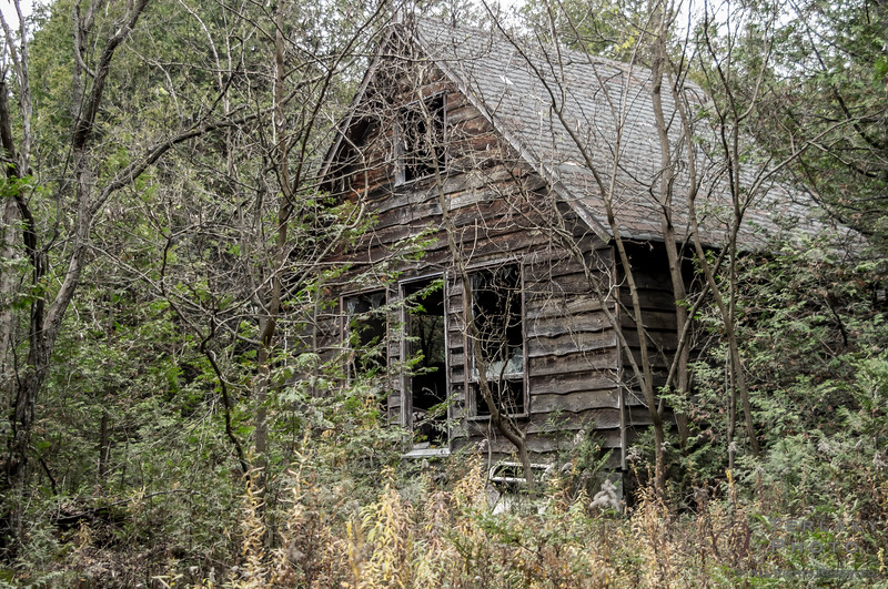 Abandoned hunting shack