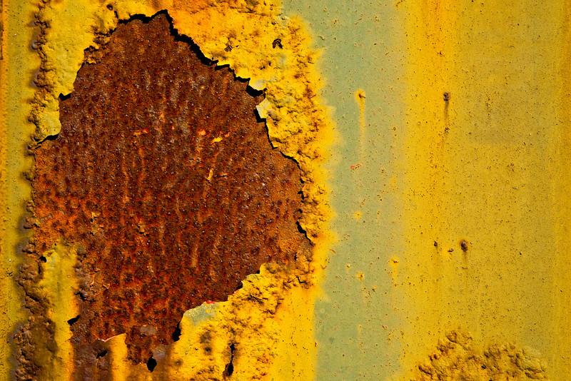 Full Sunflower - Rust and Metal Series